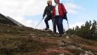 Wandern in Donnersbachwald